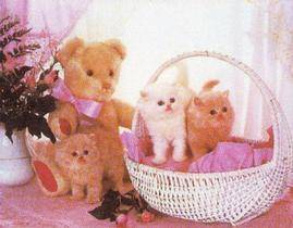 Kittens_in_basket
